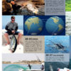 Global Angler vol24 Inhalt Teil 2